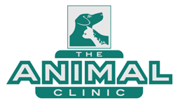 The Animal Clinic